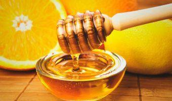 La miel (o jalea real)