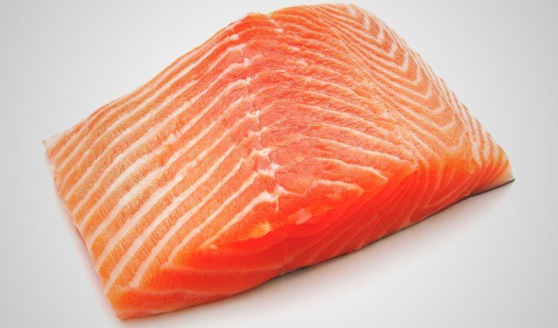 El salmón engorda