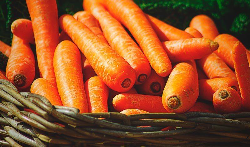 La zanahoria engorda