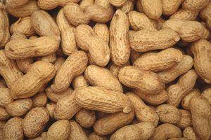 ¿Los cacahuetes engordan?