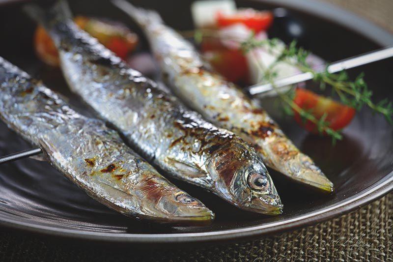 ¿Las sardinas engordan?