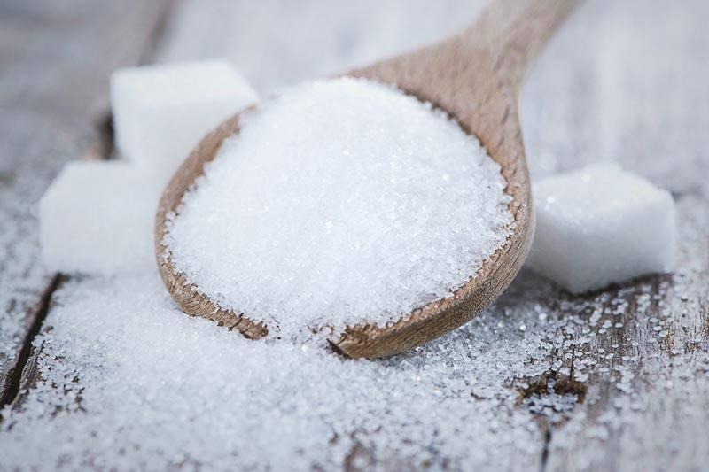 ¿El azúcar engorda?