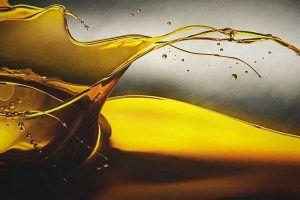 ¿El aceite engorda?