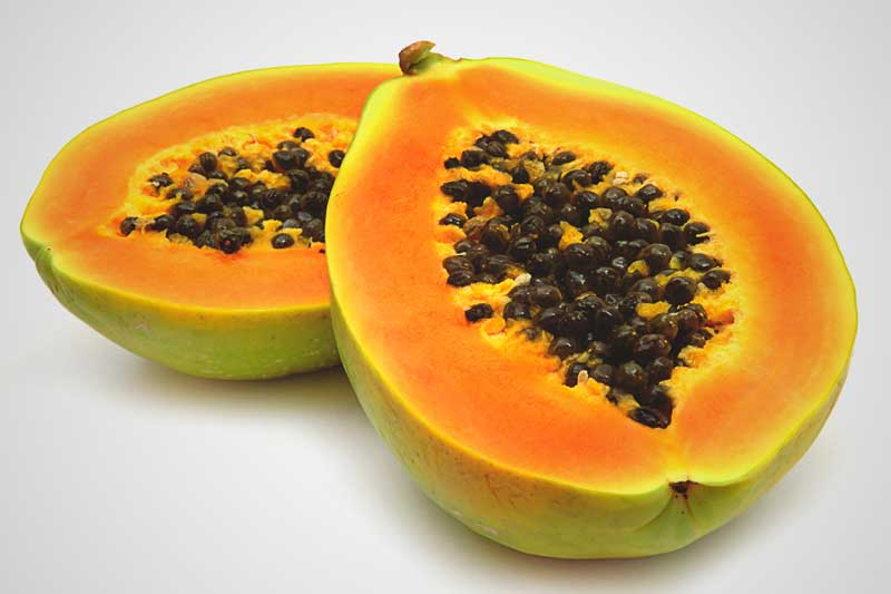 ¿La papaya engorda?