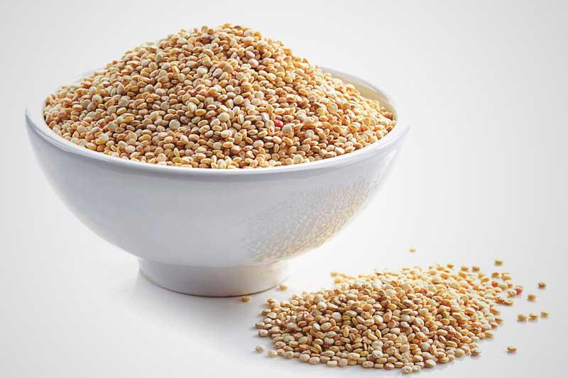 ¿La quinoa engorda?