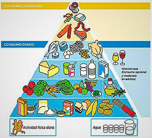 Dieta equilibrada