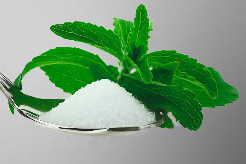 ¿La stevia engorda?